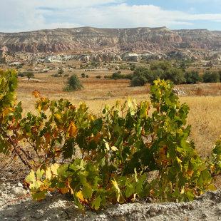 Sarkanās ielejas klintis, Kapadokija, Turcija #02