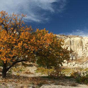 Mīlestības ieleja, Kapadokija, Turcija #07