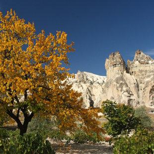 Mīlestības ieleja, Kapadokija, Turcija #01